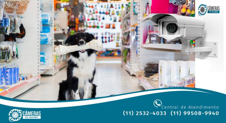 Câmeras de Segurança para Pet Shop